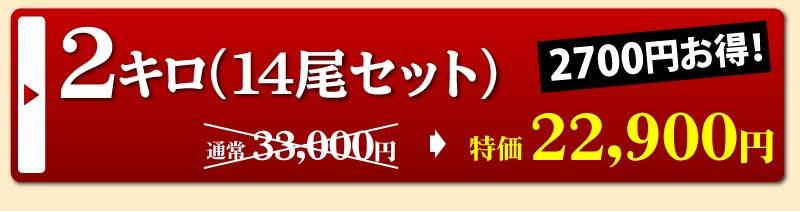 静岡県産うなぎ蒲焼14尾