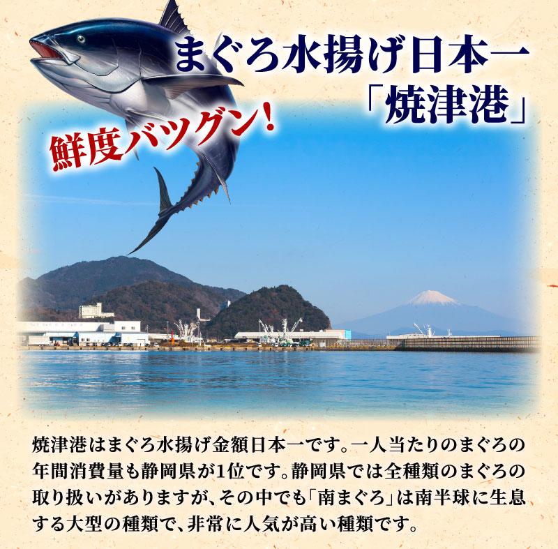まぐろ水揚げ日本一焼津港