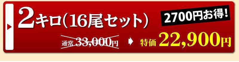 静岡県産うなぎ蒲焼16尾